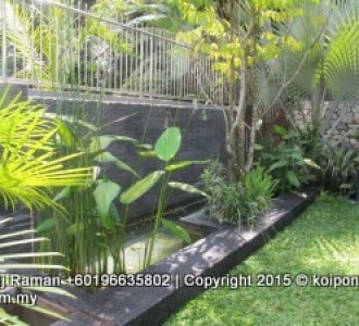 Fish pond design fountain design trading for Koi pond design malaysia