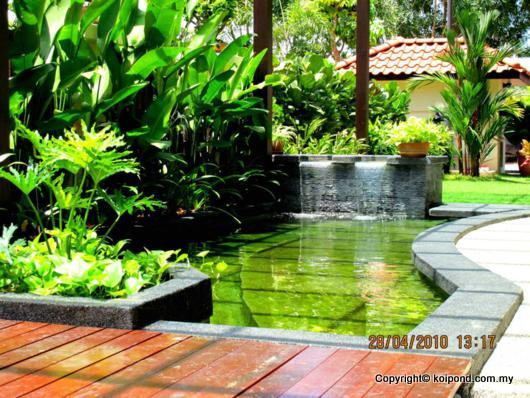 Fish Pond with Natural Landscaping