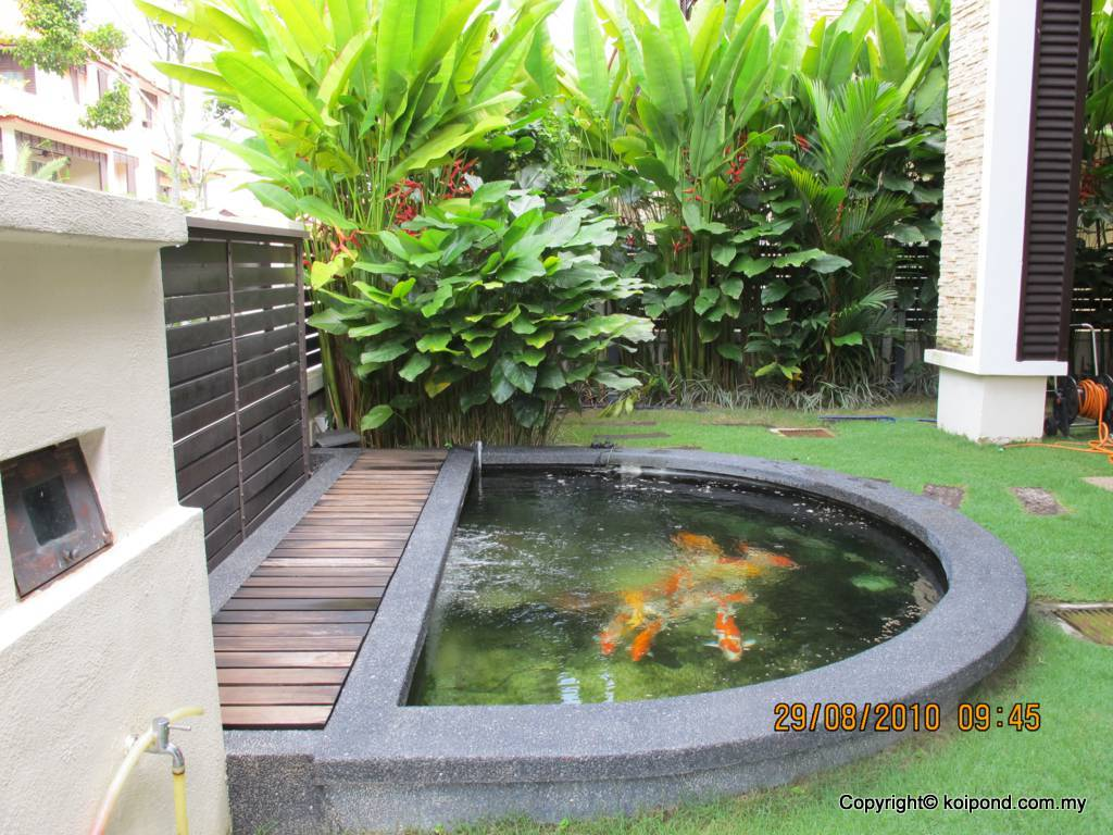 Fish pond design fountain design trading for Small pond house plans